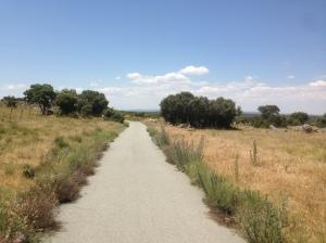 El camino sin fin. Fuente: Carlos Alameda